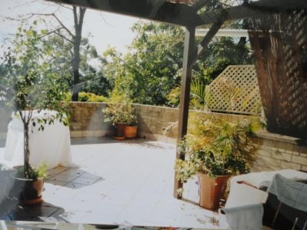 roof garden patio before